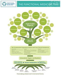 IFM_Tree